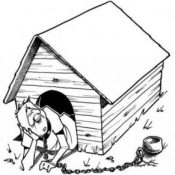 Anti Dog House Program