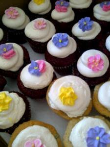 Cutsie mini cupcakes
