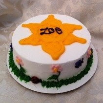 In The Garden Cake Decorating Party Theme in Denver