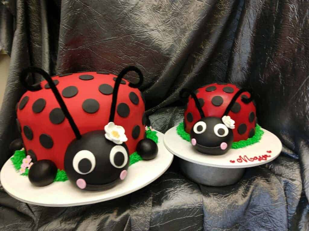 Cute Lady Bug Cake with Smash Cake