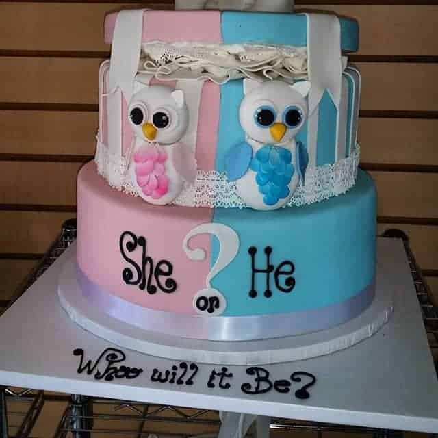 Owl 2 Tiered Gender Reveal Cake