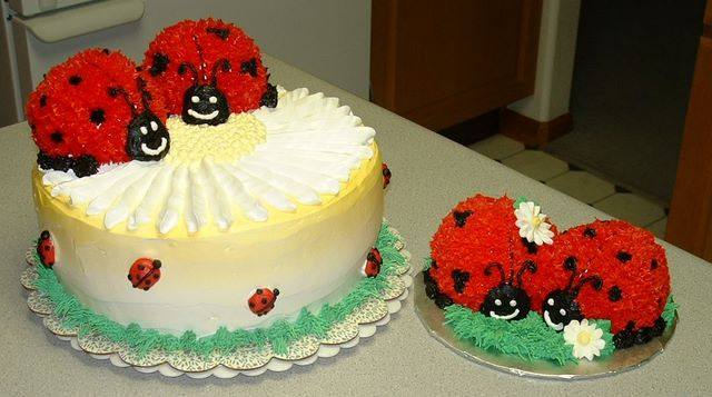 The Makery Cake Company Bug Ladybugs Cakes
