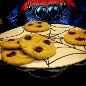 Cookies Halloween Denver