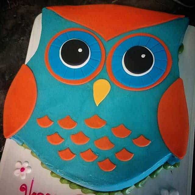 The Makery Cake Company Owl 2D Baby Shower Cake
